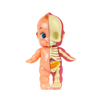 Fame Master Baby Cupid Anatomy Figure 10cm