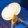 Gingko R Space Lamp