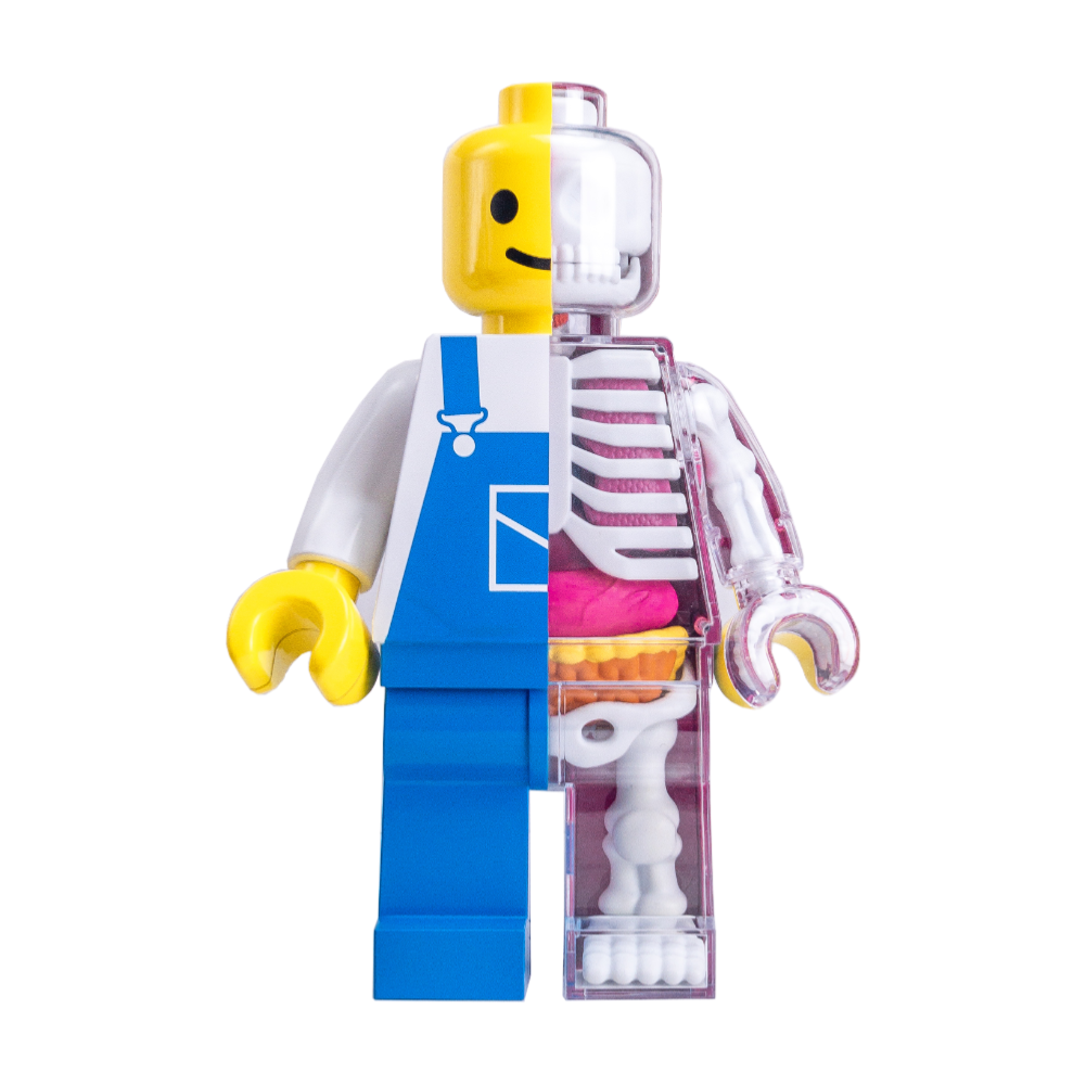 Jason Freeny Brick Man Anatomy Figure Worker