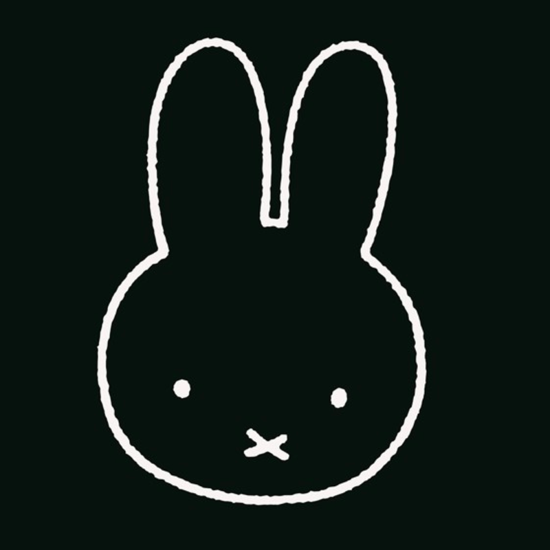 IXXI Hello Miffy . Black