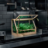 Design House Stockholm Greenhouse Mini