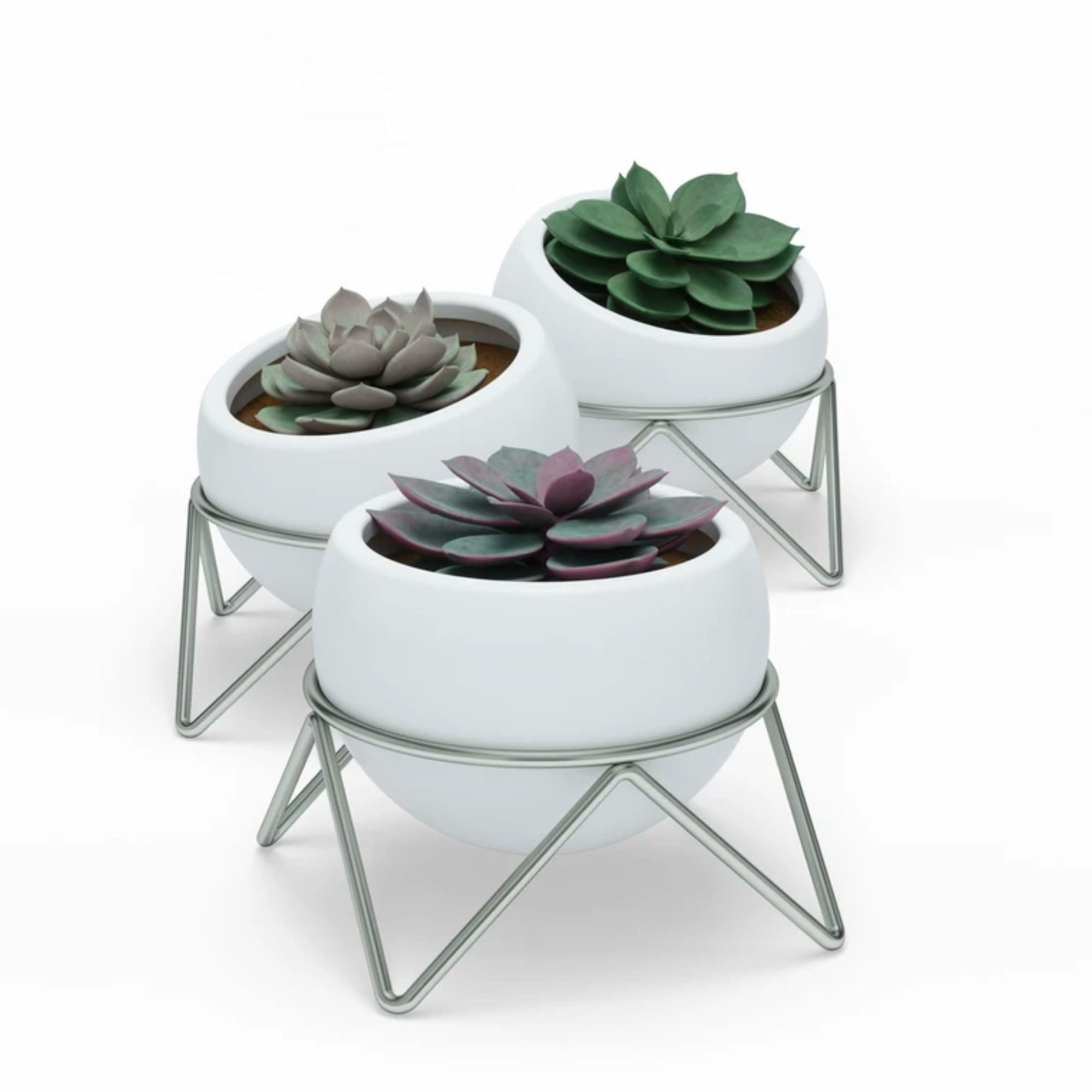 Umbra Potsy 3-pack planter, white - nickel