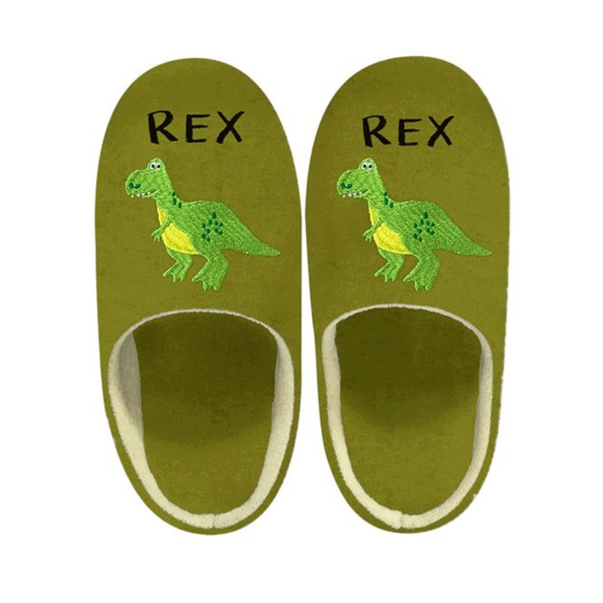 Toy Story Sign Art Slippers , Rex