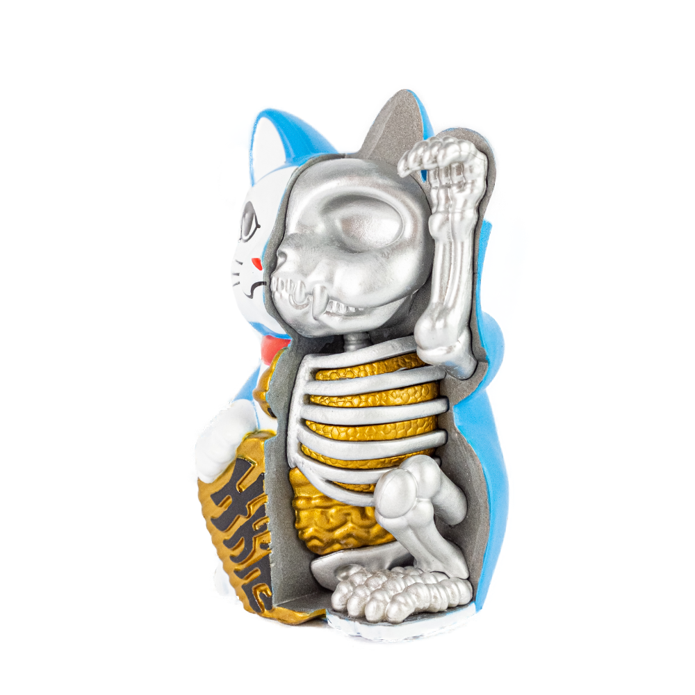 4D Master Robot Cat Anatomy Figure 9cm