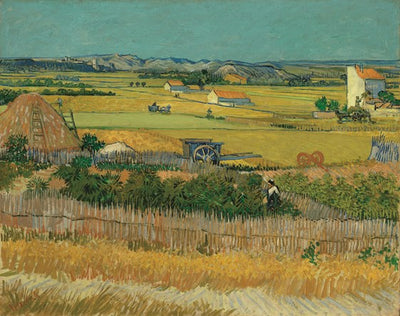Van Gogh IXXI The Harvest