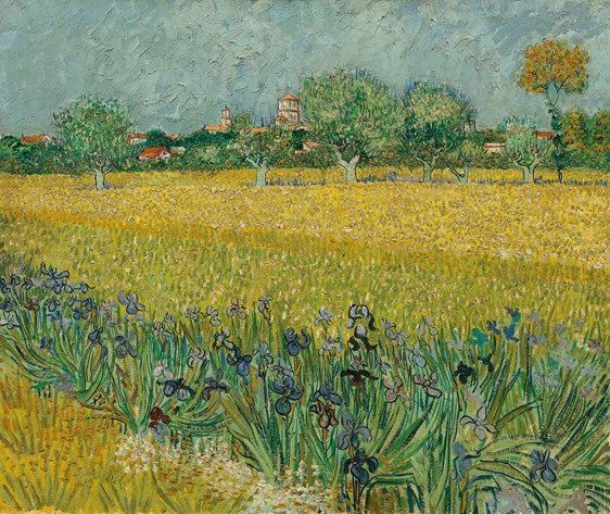 Van Gogh IXXI Field with flowers near Arles