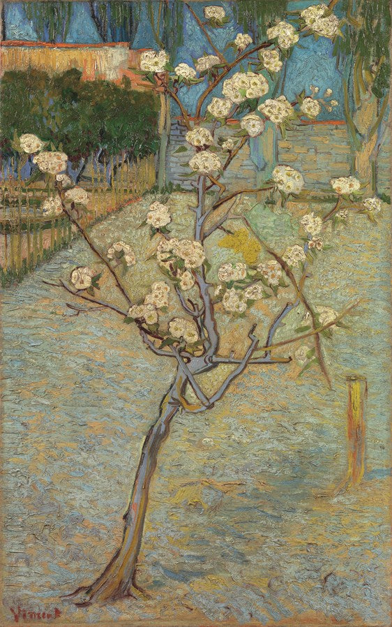 Van Gogh IXXI Small Pear Tree in Blossom