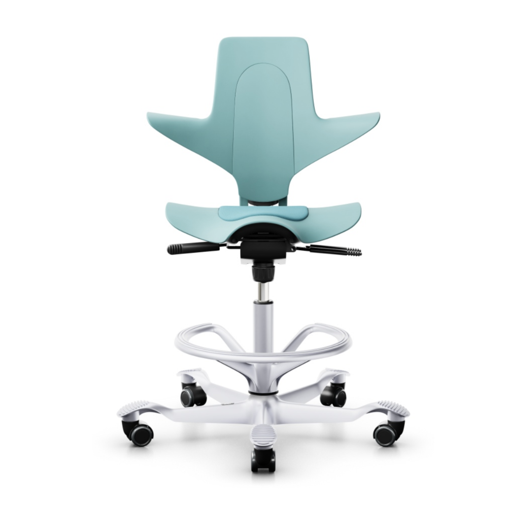 HAG Capisco Puls 8010 ergonomic chair, sea green
