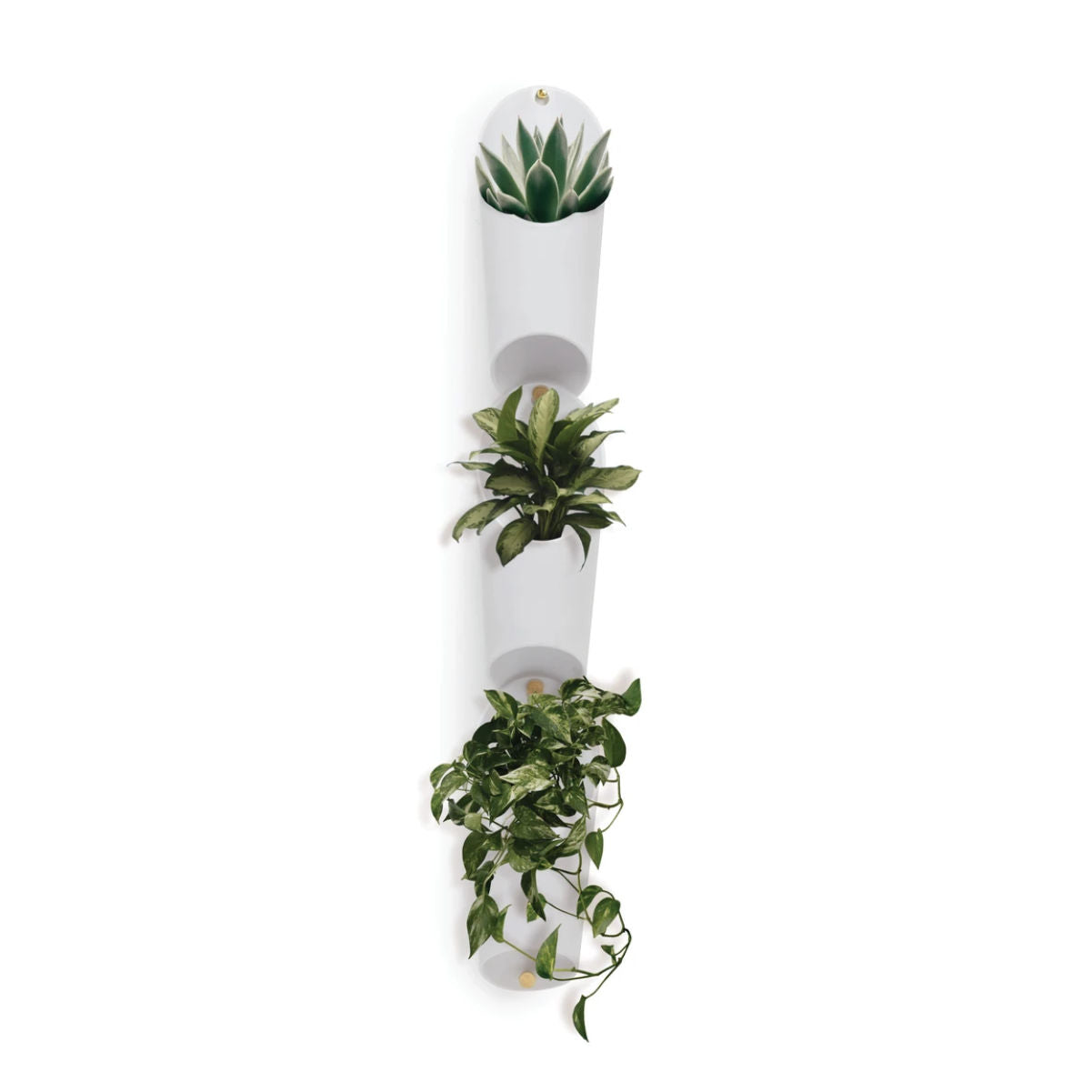 Umbra Floralink wall vessel, set of 3