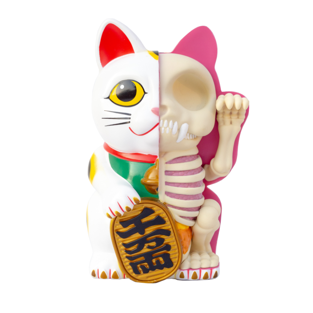 Fame Master Anatomy Maneki-neko money bank, white