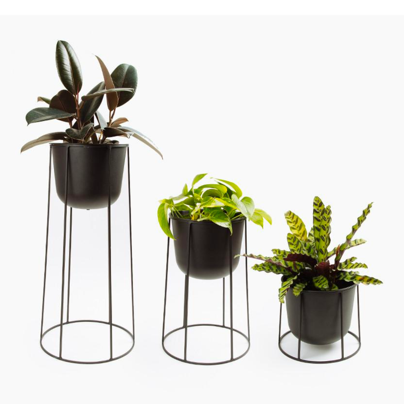 Menu Wire Planter