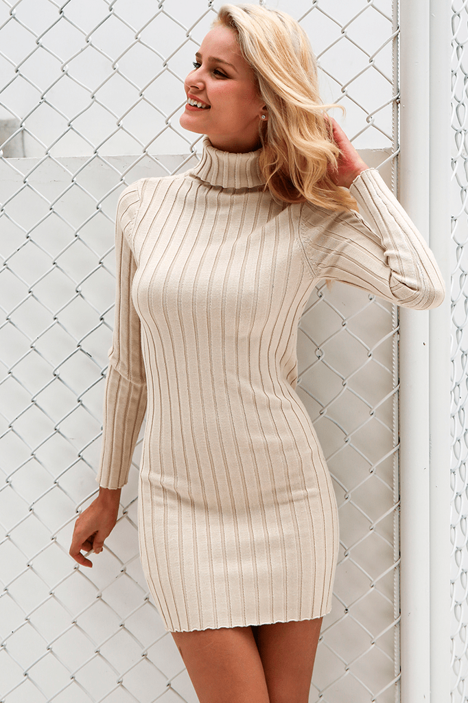 Jordan Turtleneck Dress