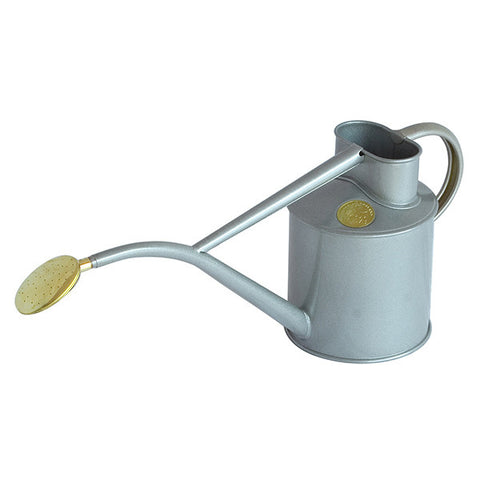 Titanium Metal Indoor Watering Can