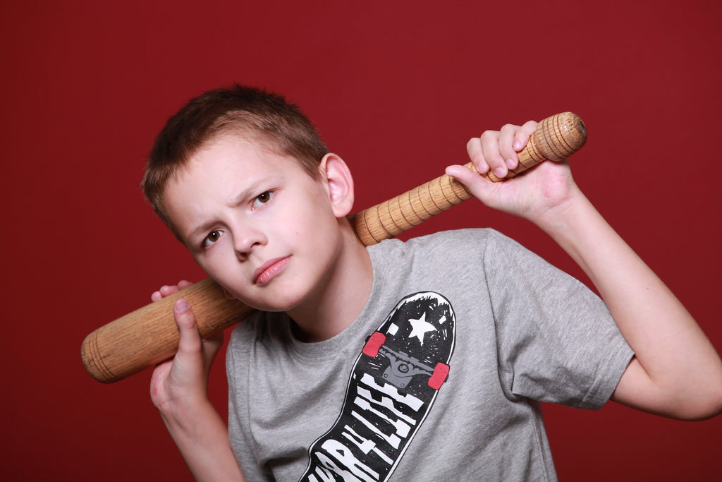 boy holding bat help your bully kid stop violence