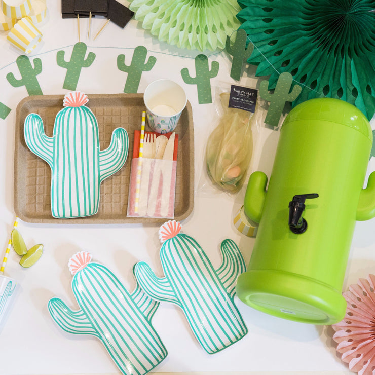 cactus party in a box