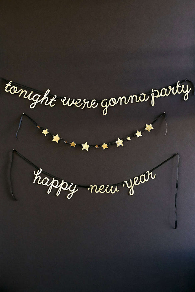 Tonight We're Gonna Party New Years Garland