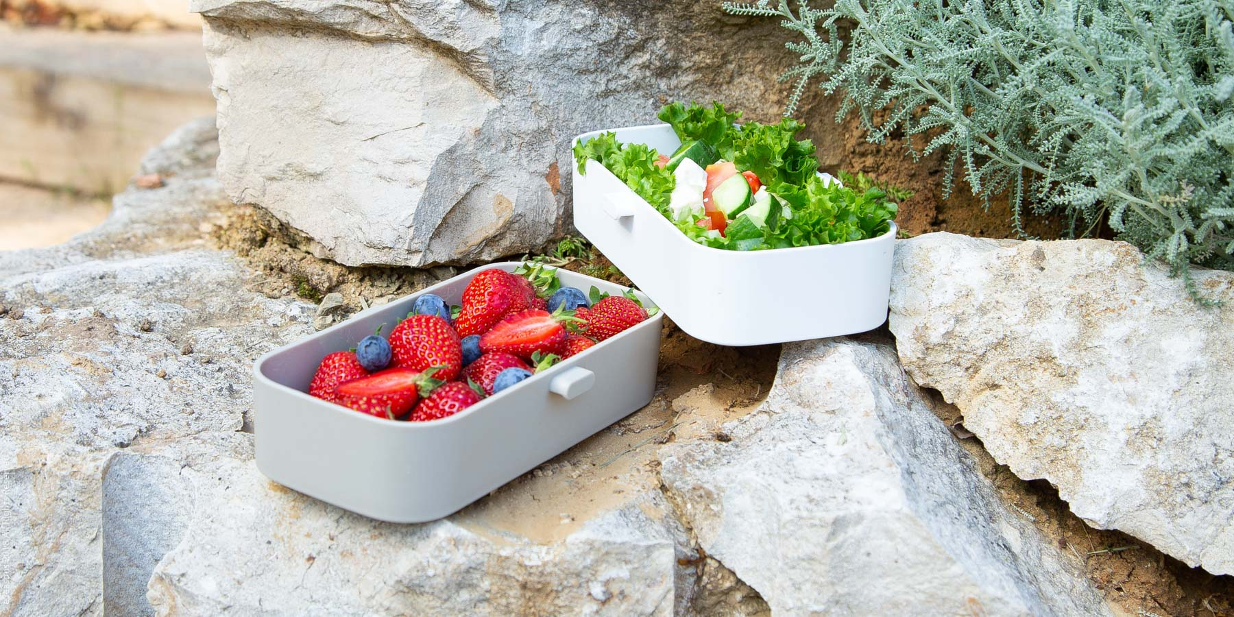 Elegant food photography: eSeasons Bento Lunchbox in Warm Grey with appetizing lunch of strawberries and salad, against rugged quarried stone