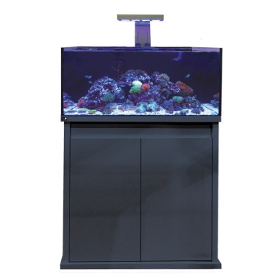 D-D Reef-Pro 900 Aquarium - Marine World Aquatics