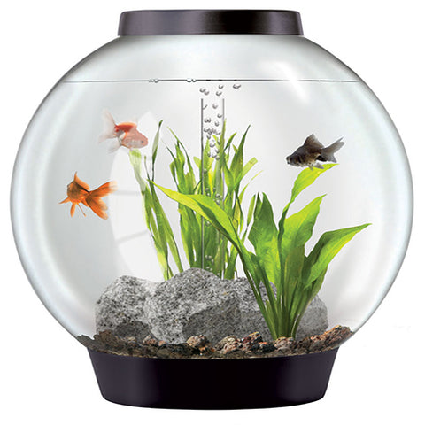 BiOrb 60 Tropical Aquarium with Standard LED - Silver, Aquariums & Cabinets by marineworld.co.uk