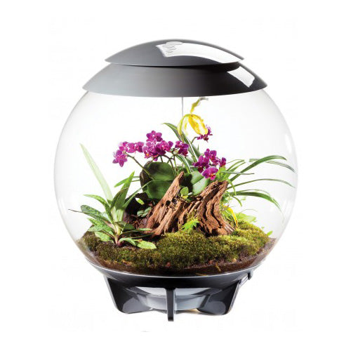 BiOrb Air (Grey), Aquariums & Cabinets by marineworld.co.uk