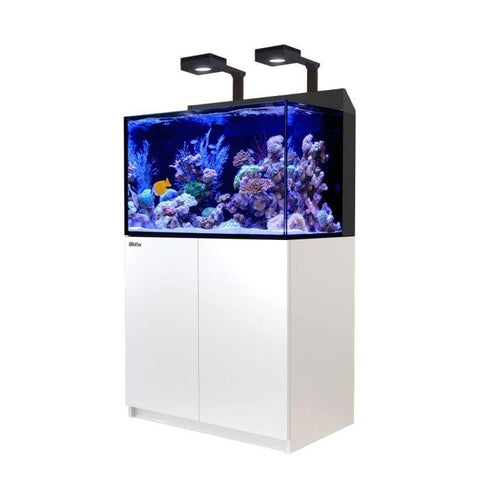 Red Sea Max E260 with 2x ReefLED 90 Lighting - Marine World Aquatics