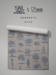 Arboreta 'Blue' Sample