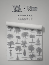 Load image into Gallery viewer, Arboreta 'Charcoal' Sample