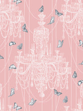 Load image into Gallery viewer, Crystal Wings 'Powder Pink'