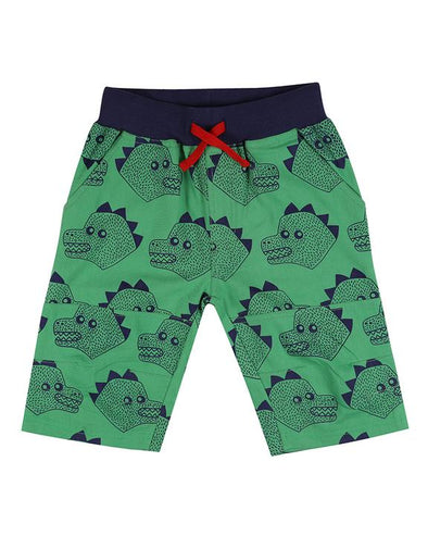 Lilly And Sid Dino Board Shorts