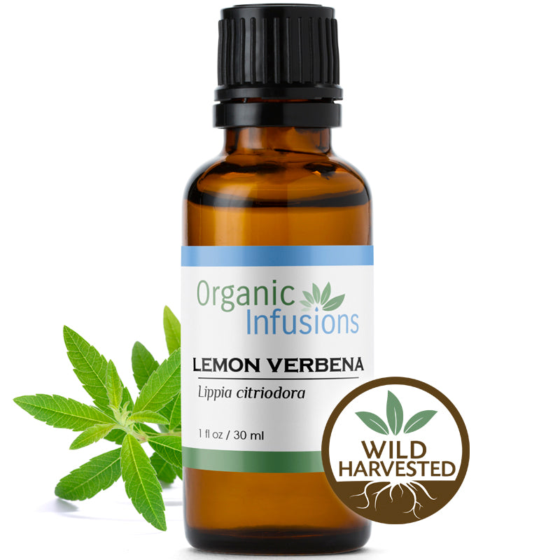 Lemon Verbena, Wildcrafted