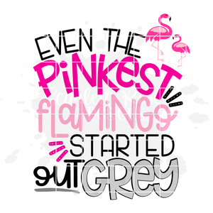 Even the Pinkest Flamingo started out Grey SVG