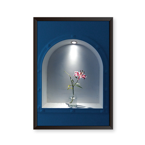 Greek Window with Flower Pot