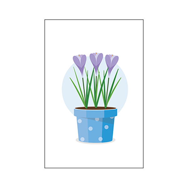 Colorful Flower Pot #1B