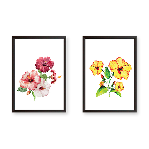 Flowers #2AB - Set of 2 Frames