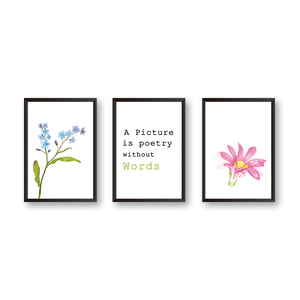 Picture Is A Poetry - Set of 3 Frames - urban-karigars