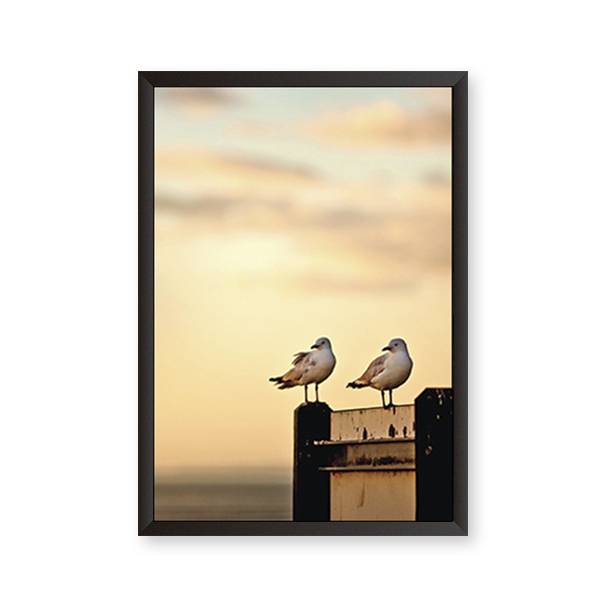 Love Birds #Beach - urban-karigars