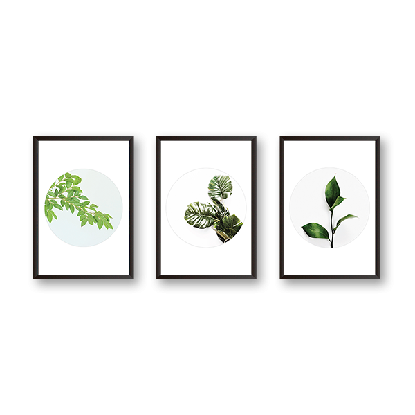 Beautiful Circle Leaves - Set of 3 Frames - urban-karigars