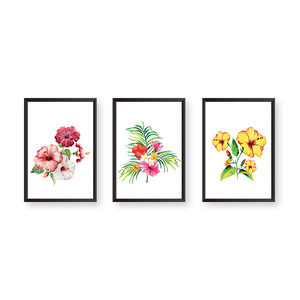 Hibiscus Flowers - Set of 3 Frames - urban-karigars