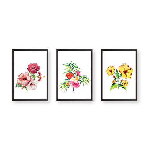 Hibiscus Flowers - Set of 3 Frames