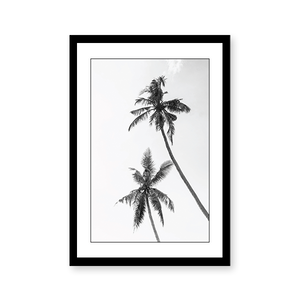 Black & White Palm - urban-karigars