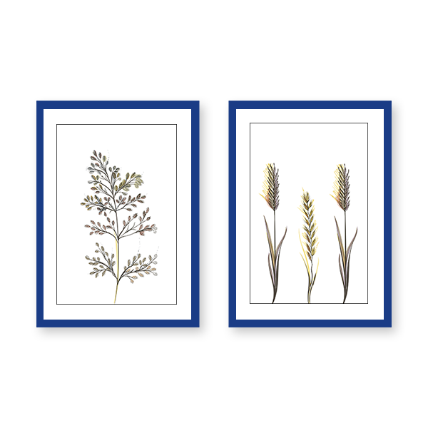Leaves #2G - Set of 2 Frames