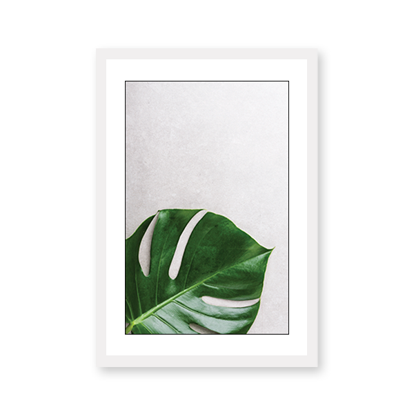 Green Monstera Leaf - urban-karigars