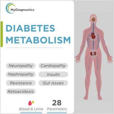 Diabetes Metabolism Test