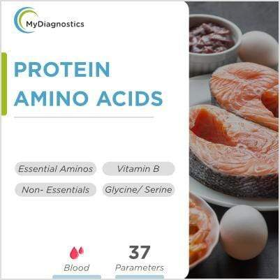 Amino Acids Profile