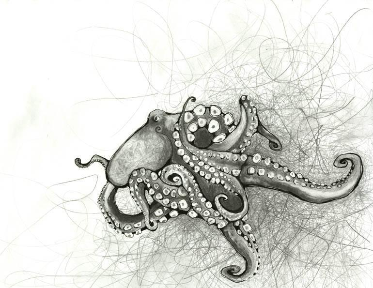 Hand drawn in pencil and octopus on a mostly white background surrounded by pencil scribbles