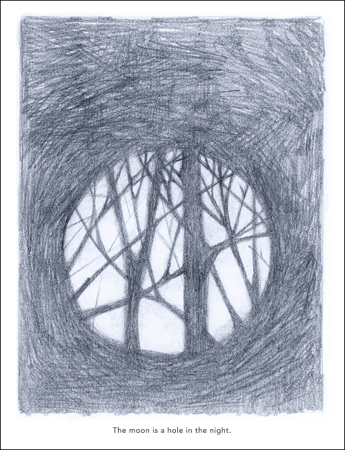 Hand drawn picture in pencil of the moon with shadows of trees and branches cast on it