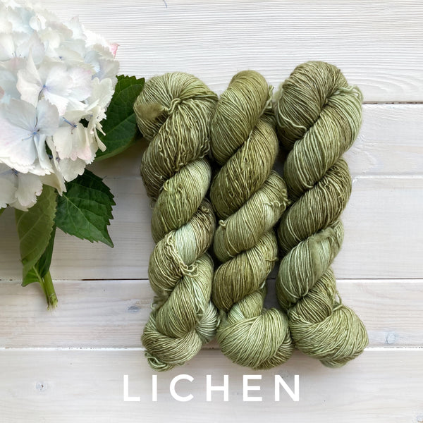 Lichen and Lace 1 Ply Superwash Merino  yarn in Canada Lichen