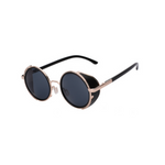 NEWTON - Steampunk Sunglasses Retro With Side Shields
