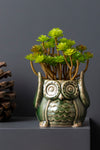 MR. OWL PLANTER - Studio Kiklee By Simrat Kohli