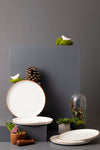 SIMON FULL PLATE - SET OF 2 - Studio Kiklee By Simrat Kohli